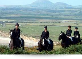 Cilan Fawr Riding